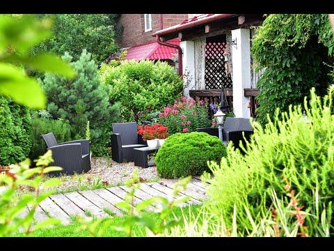 Сад начинающего цветовода от Алины Будивской