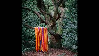 James Holden & The Animal Spirits - Thunder Moon Gathering