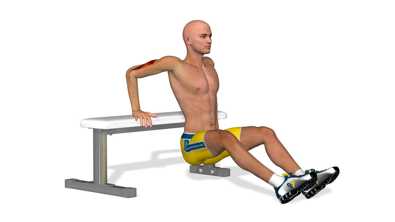 Muscler ses bras  Tricep bench dips - YouTube 36030c7c972