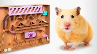 how-to-make-a-cardboard-labyrinth-for-your-hamster-pets