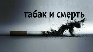 правда о табаке - Фахреев В.А.