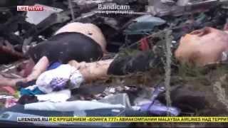 【閲覧注意】悲惨なマレーシア航空機の墜落現場ニュース映像 thumbnail