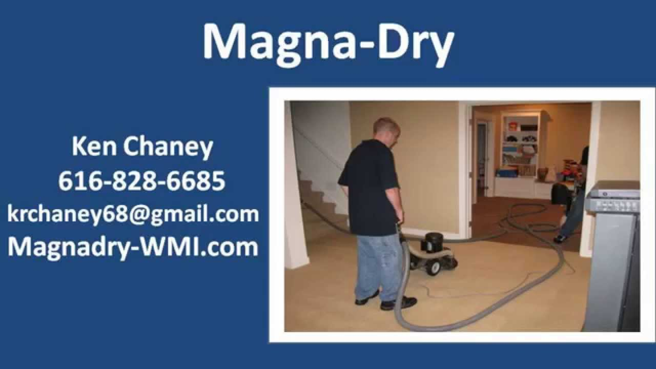 Get The Best Carpet Cleaning Grand Rapids Mi Youtube