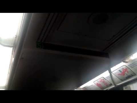 Crown Heights-Utica Avenue bound R142 (5) train ride Borough Hall-Nevins Street!