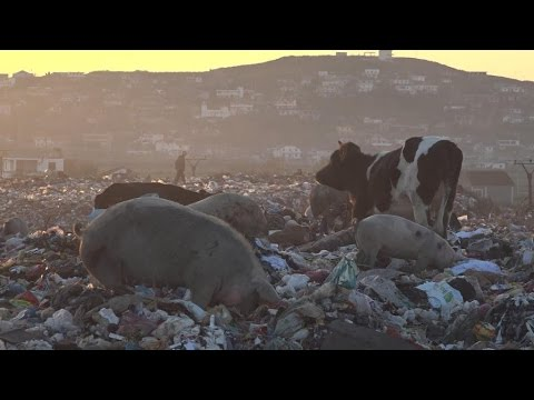 In Albania, recycling foreign waste means big business