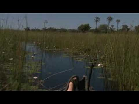 Delta Camp, Okavango Delta, Botswana