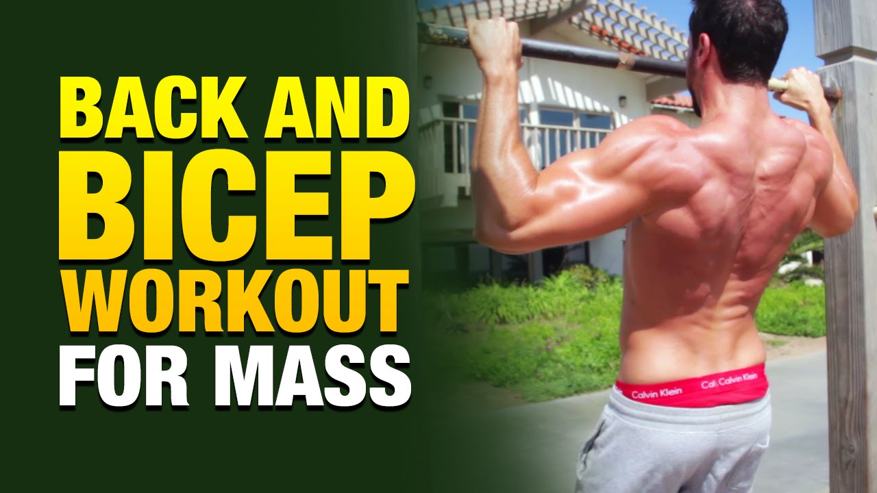 Back And Biceps Isometric tutorial and workout Created by Weight Gain Network