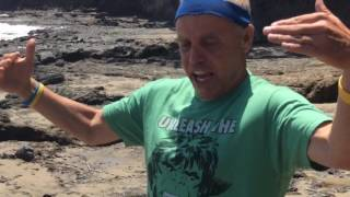Fukushima news; Laguna beach California dying Dead tide pools, and they don t Care June 2016