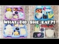 What did she eat?! - Kid Bento Styled School Lunches - Bella Boo's Lunches