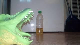 Dino puppet water bottle flip 🦖🎰luck