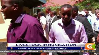 Isiolo livestock  Immunisation Exercise