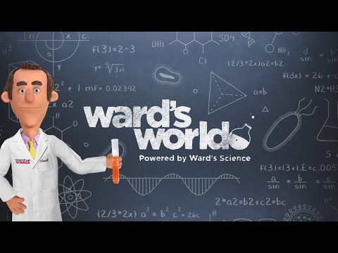 See you at Ward's World!