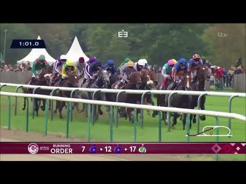 Enable wins the Qatar Prix de l'Arc de Triomphe