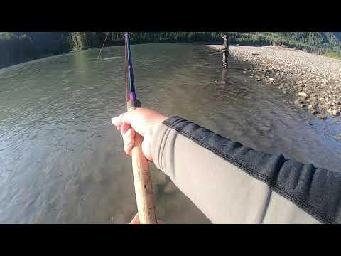 Skeena Steelhead Fishing July 2019