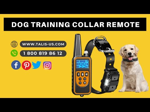 talis-us-dog-shock-training-collar-with-remote