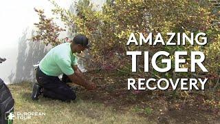 Tiger Woods crazy left-handed shot from a bush
