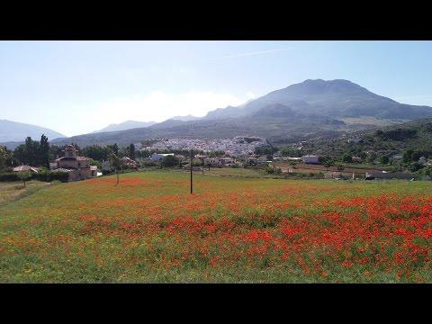 Transandalus - Bike Tour (Spain)