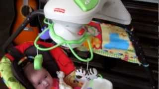 Fisher Price Luv U Zoo Cradle And Swing Review