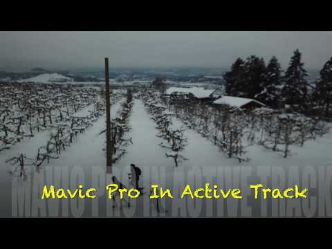 Real Field  Test  Mavic Pro Active Track