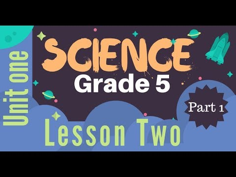 Grade 5 | Unit 1 - Lesson 2 - Part 1 - Seeing colored objects