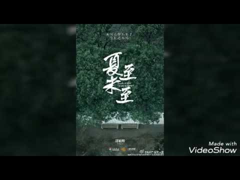 電視劇《夏至未至》插曲~<追光者> by 岑寧兒(香港歌手)