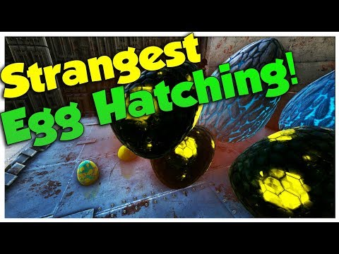 Egg Hatching!  Duo  Small Tribe PvP  Ark Survival Evolved  Ep11