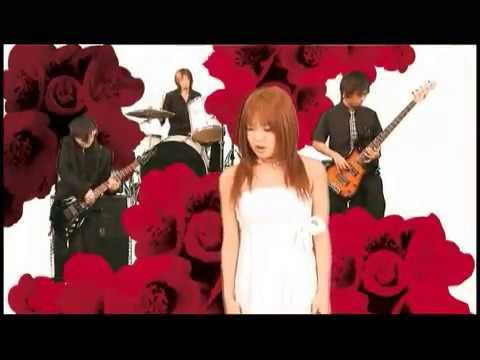 Клип Dazzle Vision - Camellia