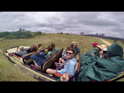 #6 Video Port Elizabeth