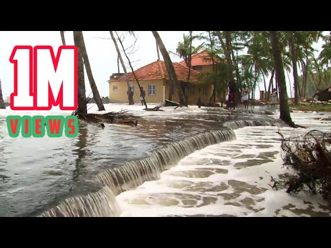 Tsunami After Effects On Beaches - Must Watch