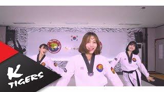 TWICE Medley - K-Tigers Taekwondo ver.