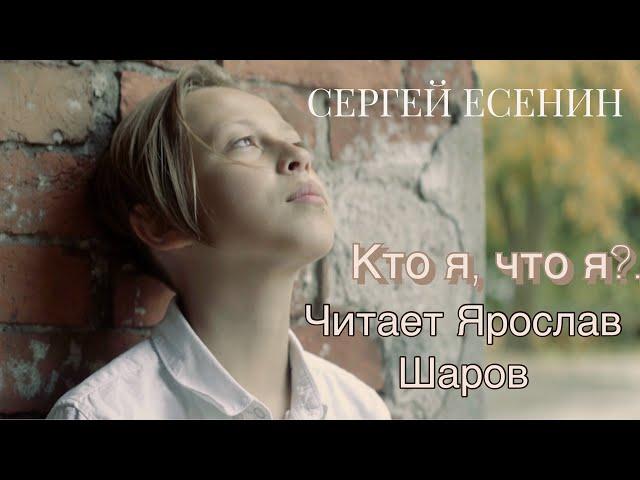 Изображение предпросмотра прочтения – ЯрославШаров читает произведение «Кто я, что я? Только лишь мечтатель...» С.А.Есенина