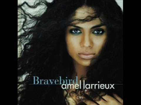 Bravebird - Amel Larrieux