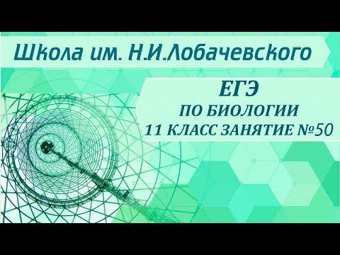 ЕГЭ по биологии 11 класс  Занятие 50 Органические вещества. Липиды. АТФ
