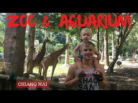 Visiting Chiang Mai Zoo and Aquarium | THAILAND travel