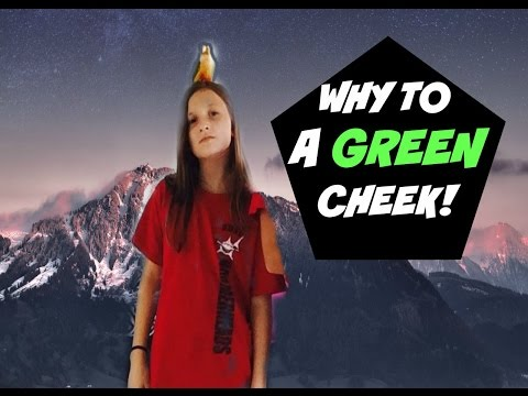 Why to buy a Green Cheek Conure!🐦😝