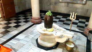 Temple in (B.H.E.L) BHOPAL.(Madhyapradesh)भोलेनाथ मंदिर, मां दुर्गा,श्री राधा कृष्ण जी,श्रीहनुमान जी