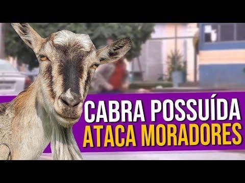 Cabra Possuída Ataca Moradores