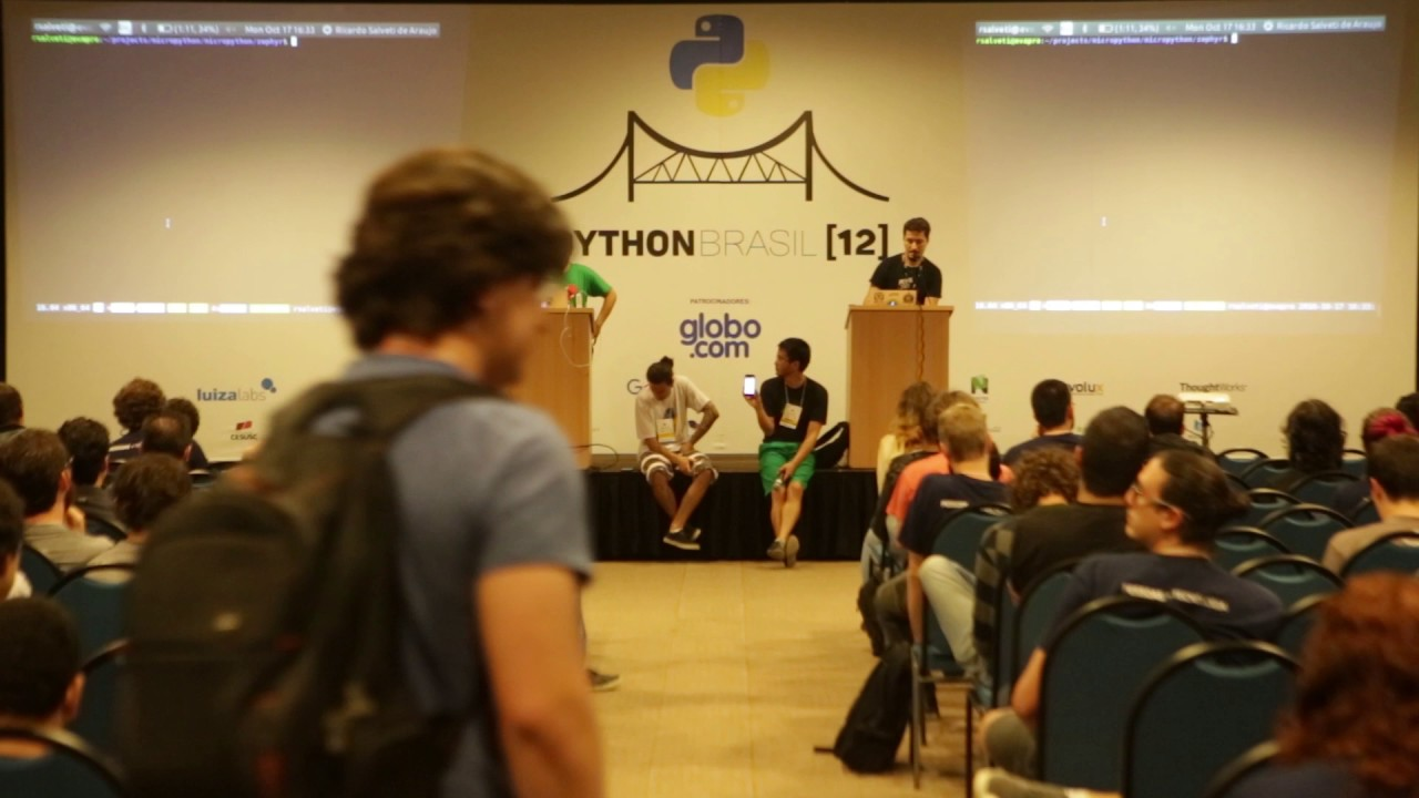 Image from lightning talk - MicroPython