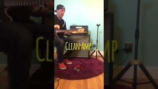 Foppstar Amps - The Gentleman #3 (Two Channels From a Single Distortion Pedal)