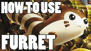 How To Use: Furret! Furret Strategy Guide ORAS / XY