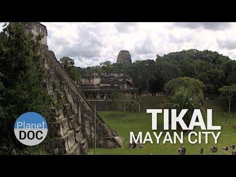 Tikal. Mayan City