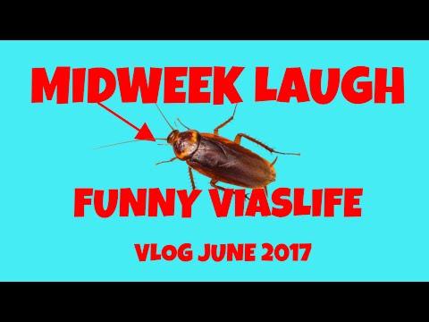 Midweek Laugh Funny Viaslife Vlog June 2017