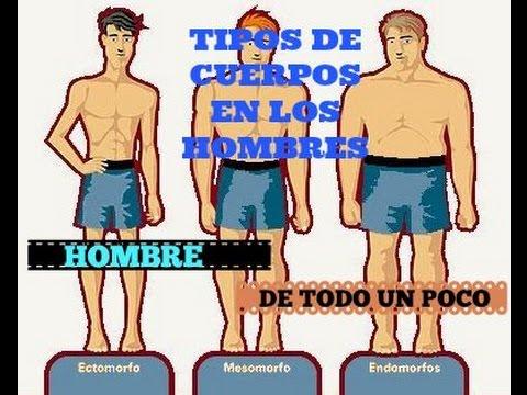 817fbdbb50 TIPOS DE CUERPOS EN LOS HOMBRES - YouTube