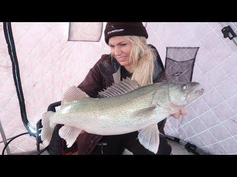 Releasing Monster Winnipeg Walleye | Ice Fishing 2018