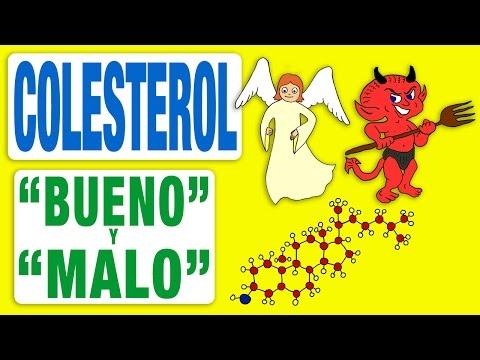 El Colesterol Bueno y El Colesterol Malo