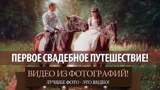 Свадебный альбом купить