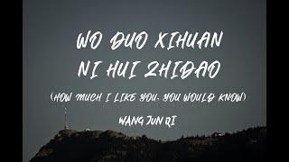 WANG JUN QI - Wo Duo Xihuan Ni, Ni Hui Zhidao (Lyrics Ost A Love So Beautiful)