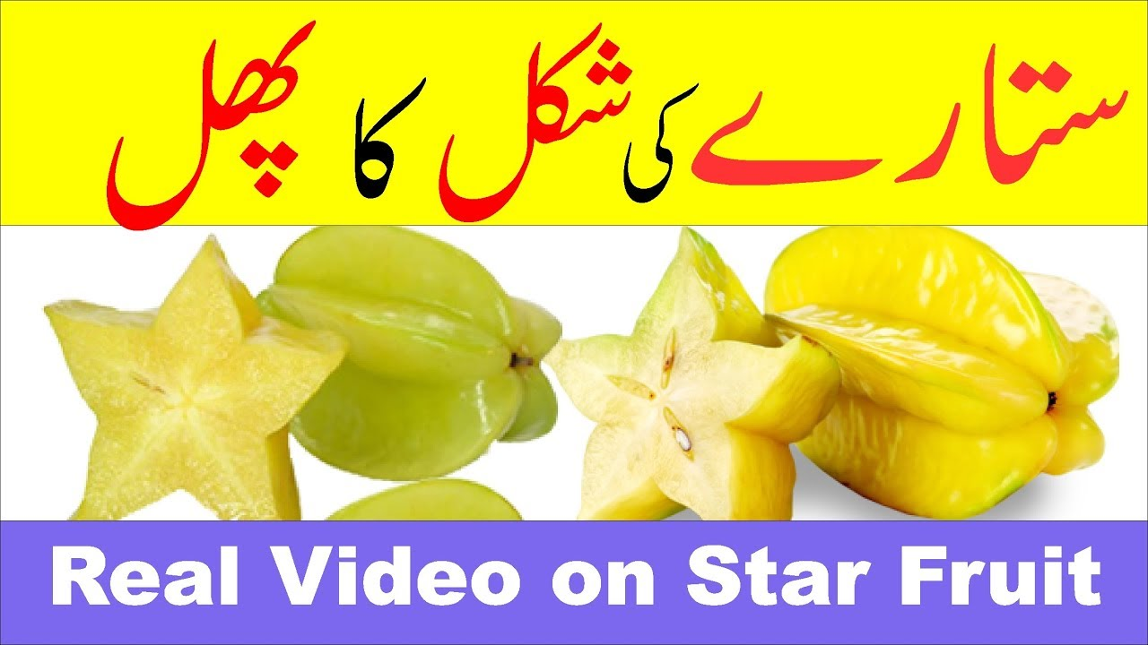 amazing star fruit - full documentary ( urdu / hindi) - youtube
