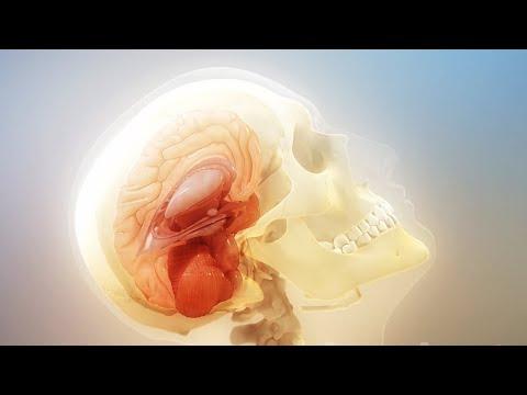 Может ли при сотрясении мозга болеть живот