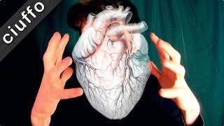 Il CUORE in Anatomia   Ciuffo all'Università